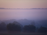 Early Morning Mist Photographic Print by Jim Craigmyle