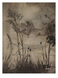 The Fairies Are Exquisite Dancers Giclee Print by Arthur Rackham