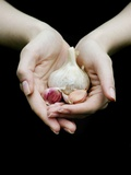 Handful of Garlic Photographic Print by Elisa Lazo De Valdez