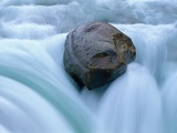 Boulder in Sunwapta Falls Photographic Print by Mike Grandmaison