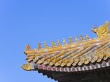 Traditional Decorative Roof Tiles in the Forbidden City Photographic Print by Keren Su