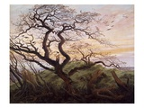 The Tree of Crows Reproduction procédé giclée par Caspar David Friedrich
