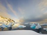 Evening Light on Mountains and Icebergs on Antarctic Peninsula Photographic Print by John Eastcott & Yva Momatiuk