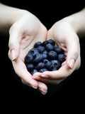 Handful of Blueberries Photographic Print by Elisa Lazo De Valdez