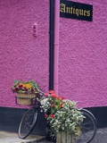 Bicycle and Flowers Outside Antique Store in Carrick Photographic Print by Richard Cummins