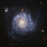 NGC 1309 Galaxy Photographic Print