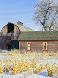 Barn in Winter Photographic Print by Scott Smith