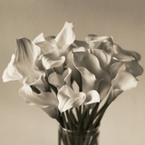Calla Lilies in Vase Photographic Print by Ann Cutting