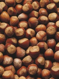 Hazelnuts in Shells Photographic Print by  Envision