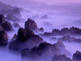 Garrapata Beach on the Big Sur Coastline Photographic Print by David Muench