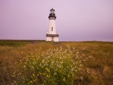 Yaquina Head Lighthouse Photographic Print by Craig Tuttle
