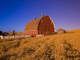 Wheat Field and Barn at Sunrise Photographie par Craig Tuttle