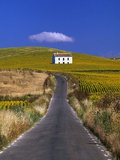 Farmhouse by Country Road Photographic Print by José Fuste Raga