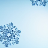 Snowflakes Photographic Print by David Arky