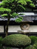 Garden in Senso-ji Temple Photographic Print by Bruno Ehrs