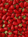 Fresas Lámina fotográfica por Ed Young
