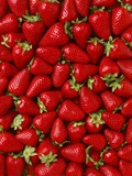 Strawberries Photographic Print by Ed Young