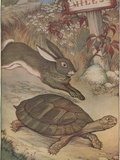 The Hare and the Tortoise Photographic Print by Milo Winter