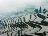 Morning Fog Above Rice Fields Photographic Print by Frank Krahmer