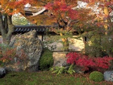Autumn Foliage in Japanese Garden Photographic Print