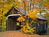 Covered Bridge and Maple Trees Photographie par James Randklev