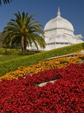 Golden Gate Park Conservatory Photographic Print by Richard Nowitz