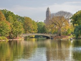 A Bridge in Central Park Fotografie-Druck
