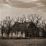 Abandoned House Surrounded by Trees Photographic Print by Tom Marks