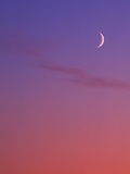 Evening Sky in Magenta with Crescent Moon - Background, Canada. Photographic Print by Chris Cheadle