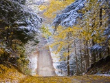 Rural road after snow Photographic Print by Jim Craigmyle