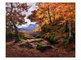 Autumn Gold Giclee Print by Alfred Oliver