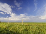Active Prairie Sky and Farm Fenceline West of Calgary, Alberta, Canada. Photographic Print by Peter Carroll