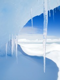 Antarctic Icicles, Snow Hill Island, Weddell Sea, Antarctica Photographic Print by Wayne Lynch