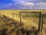 Fence Along Field, South West Saskatchewan, Canada Photographic Print by Mike Grandmaison