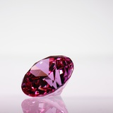 Pink Jewel Photographic Print