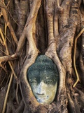 South East Asia, Thailand, Ayuthaya, Wat Mahathat, Buddha Head Entwined in Roots of Banyan Tree Photographic Print by Chris Cheadle