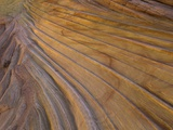 Colorful striated sandstone layers at Coyote Buttes Photographic Print by John Eastcott & Yva Momatiuk