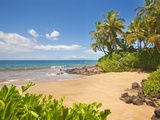 Secluded sandy beach on Maui Stampa fotografica di Ron Dahlquist