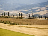 Rolling Tuscan Countryside Photographic Print by Marco Cristofori