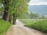 Rural Road in Cades Cove Photographic Print by William Manning