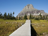 The pathway to the view of Hidden Lake Photographic Print by Bill Stormont