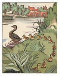 Book Illustration of Mother Duck and Ducklings by Clifford Webb Giclee Print