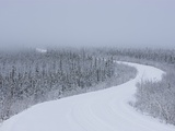 Dempster Highway in snow storm Photographic Print by Theo Allofs