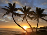 Sunrise, Windward Oahu, Hawaii Fotodruck von Douglas Peebles