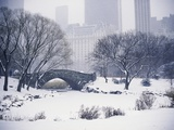Snow over Central Park in New York Photographic Print by Scott Barrow