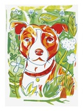 Staffordshire Bull Terriers Giclee Print