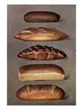 Illustration of five types of bread loaves Giclee Print