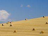 Italy, Tuscany, Bales of straw on corn field Photographic Print by Fotofeeling