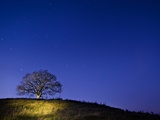 Burrow Hill, Somerset, at night Photographic Print by Simon Plant