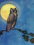 Winking owl with full moon Photographic Print